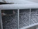 box-sotto-la-neve_0